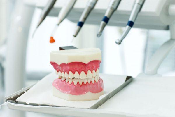 Bild av tandmodell